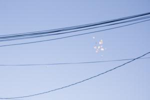 birds blurry blue