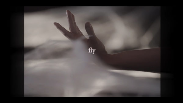 music video hand fly